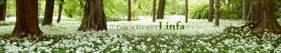 Laboratorio Linfa
